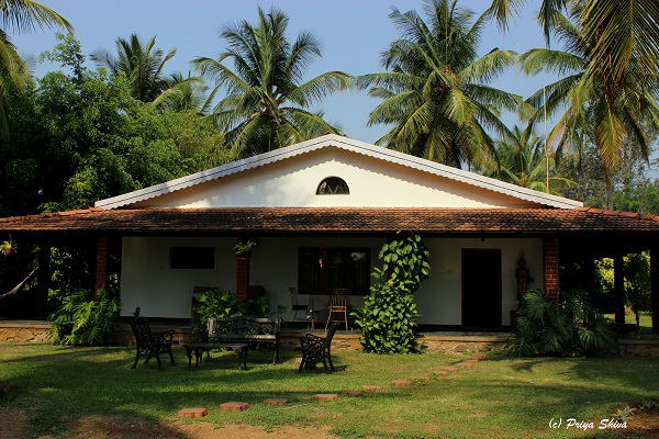 whispering windows home stay - masinagudi