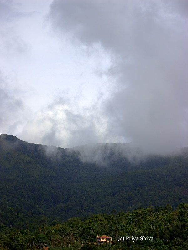 South Coorg
