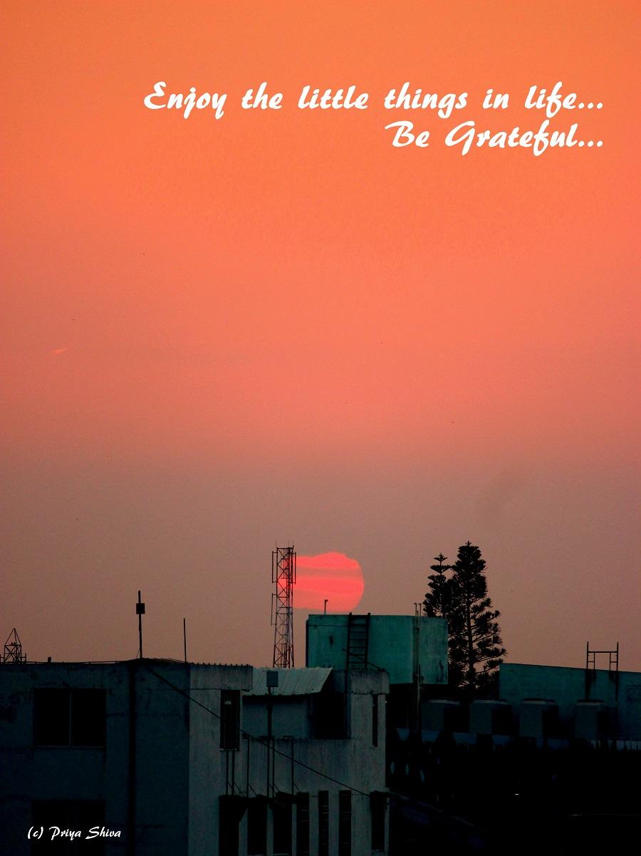 Human and Emotions - Gratitude