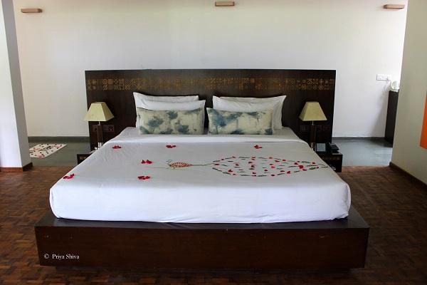 qahva suite