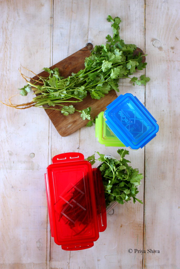 How To store coriander leaves